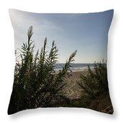 California Carlsbad Beach Hidden View Throw Pillow