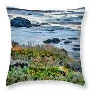 California Central Coast Near San Simeon Throw Pillow