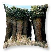 California Coachella Oasis2 Throw Pillow