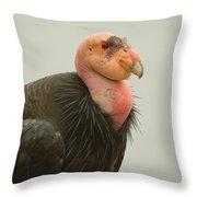 California Condor Big Sur Throw Pillow