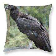 California Condor Throw Pillow