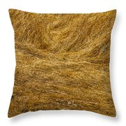 California Gold Throw Pillow