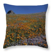 California Gold Poppies And Baby Blue Eyes Throw Pillow