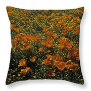 California Gold Poppies Throw Pillow