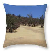 California Grass And Oak Trees Throw Pillow