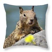 California Ground Squirrel Throw Pillow