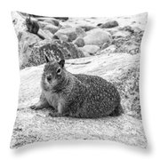 California Ground Squirrel In Black And White Throw Pillow