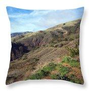 California Hillside Throw Pillow