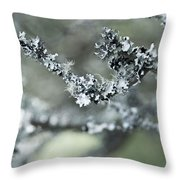 California Moss Throw Pillow