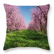 California Peach Tree Orchard  Throw Pillow