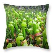 California Pitcher Plant Throw Pillow