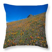 California Poppies Baby Blue Eyes And Owl Clover Throw Pillow