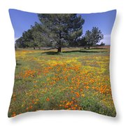 California Poppy And Eriophyllum Throw Pillow