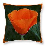 California Poppy Spectacular Throw Pillow