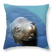 California Sea Life Throw Pillow
