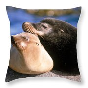 California Sea Lions Throw Pillow by Mark Newman