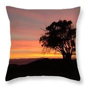 California Tree At Sunset Throw Pillow