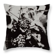 California Vineyard Throw Pillow
