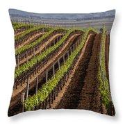 California Vineyard Throw Pillow