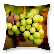 California Winery Grapes Throw Pillow