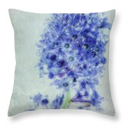 Californian Blue Throw Pillow