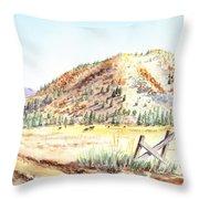 Californian Landscape Saint John Ranch Bald Mountain View Shasta County Throw Pillow