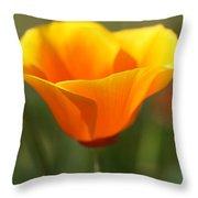 Californian Poppy Throw Pillow