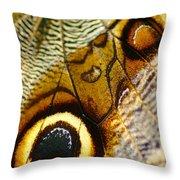 Caligo Atreus Throw Pillow