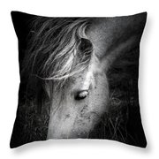 Call Me The Wind Throw Pillow by Shane Holsclaw