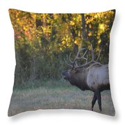 Call Of Love Throw Pillow