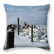 Call The Insurance Company Throw Pillow