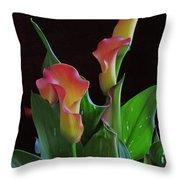 Calla Lilies 2  Throw Pillow