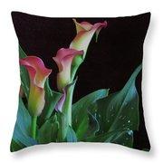 Calla Lilies 3 Throw Pillow