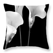 Calla Lilies In Triplicate In Black And White Throw Pillow