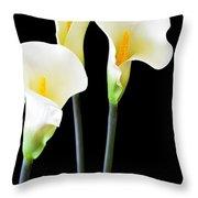 Calla Lilies In Triplicate Throw Pillow