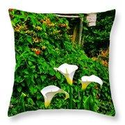 Calla Lilies Vertical Throw Pillow
