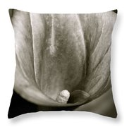 Calla Lilly Throw Pillow
