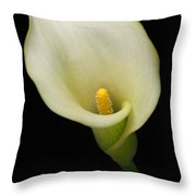Calla Lily 2 Throw Pillow