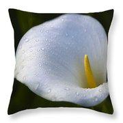 Calla Lily 3 Throw Pillow