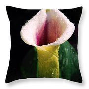 Calla Lily Droplets Throw Pillow