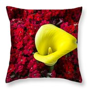 Calla Lily In Red Kalanchoe Throw Pillow