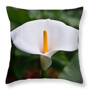 Calla Lily Laterally Expanded Throw Pillow