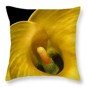 Calla Lily On Black Throw Pillow