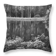 Callaway Garden Reflection Pond Throw Pillow