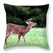 Calling Buck Throw Pillow
