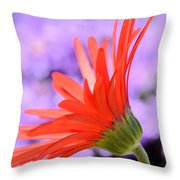 Calling On The Sun Throw Pillow