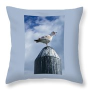 Calling Seagull Throw Pillow