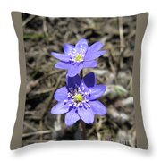 Calling Spring. Two Violets Throw Pillow