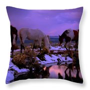 Calm After The Storm  Throw Pillow by Jeanne  Bencich-Nations