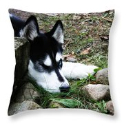 Calm And Comfy Throw Pillow